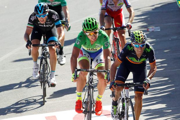 Movistar's Spanish cyclist Alejandro Valverde crosses the finish line to win the fourth stage of the 2015 Vuelta Espana cycling tour