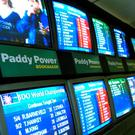 'If there was no Paddy Power, it would be some other betting company taking gamblers' money'