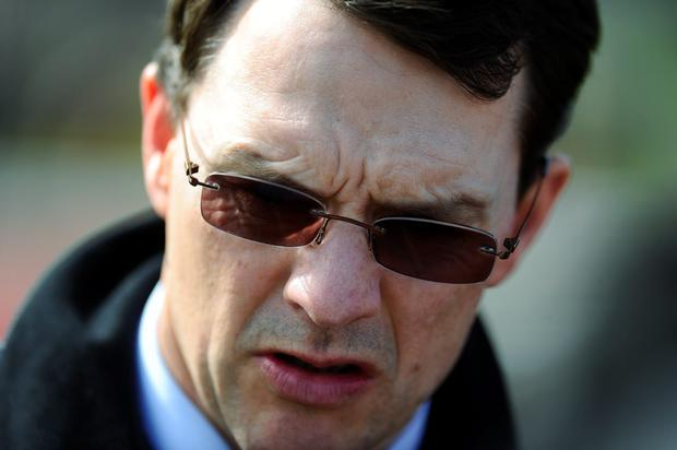 Having previously bypassed the Sussex Stakes on account of the ground, Aidan O'Brien is hoping conditions will be favourable for September 12