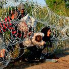 Syrian migrants cross under a fence as they enter Hungary at the border with Serbia