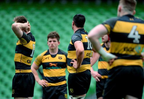 Young Munster came within minutes of a massive shock last season when they reached the semi-final where they lost 23-19 to eventual champions Lansdowne after extra-time