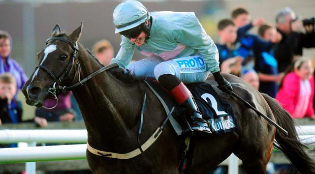 Ken Budds' Here For The Craic has the assistance of the excellent seven-pound claiming Jack Kennedy