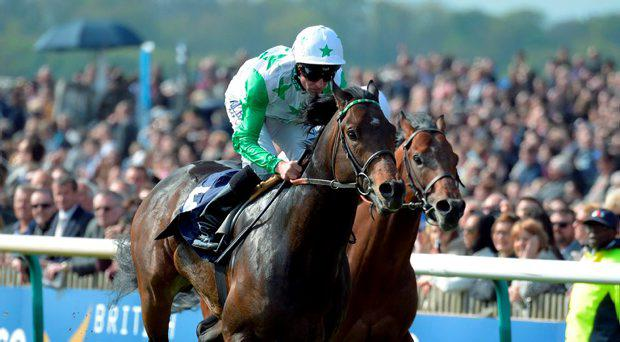 Twilight Son with D O'Neill wins Handicap Stakes at Newmarket 2-5-15.