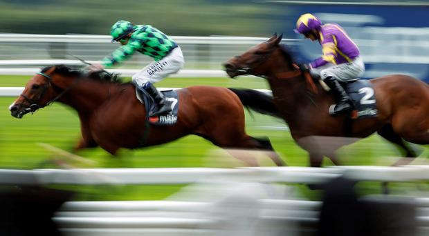 Jamie Spencer riding Richard Of Yorke win at Ascot yesterday