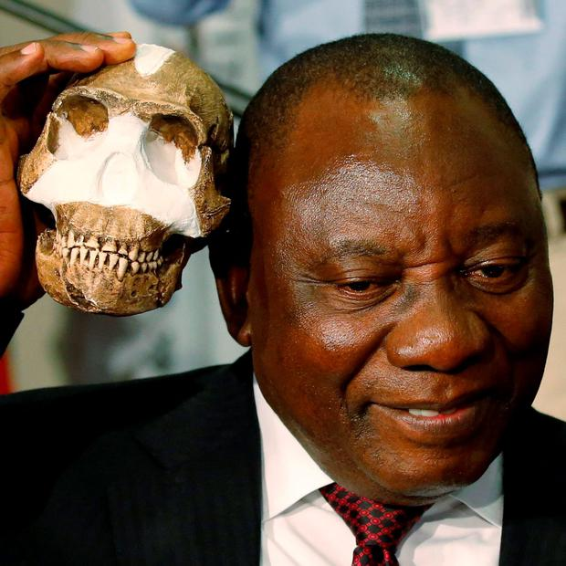 South Africa's Deputy President Cyril Ramaphosa holds a replica of the skull of a newly discovered ancient species, named