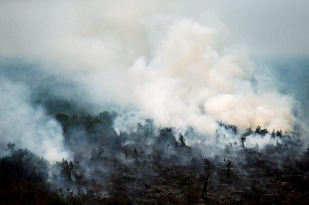 An aerial view of a burning forest at Ogan Komering Ulu area in Indonesia's south Sumatra province REUTERS/Beawiharta
