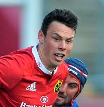 Matt D'Arcy, Munster
