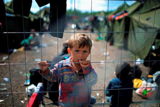 Suffer little children: A young boy looks through the fence of the migrant holding camp at the Hungarian border with Serbia where 6,000 refugees have arrived in the week alone