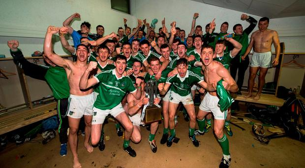 The Limerick team celebrate in the dressing room after their win over Wexford