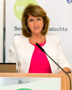 Minister for Social Protection and Tánaiste Joan Burton