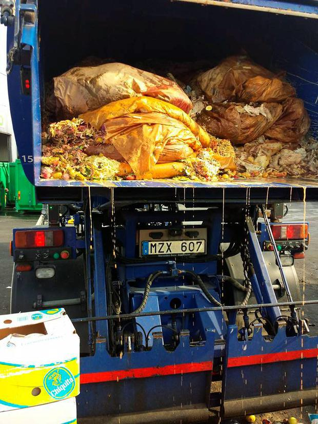 The cat was buried under more than 5 tonnes of food Credit: Bekir Mercil (Facebook)