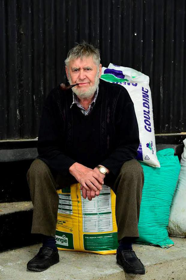 Ken Walsh from Portlaoise taking a break at the recent Eastern Suffolk Sheep Breeders Club and sale at Tullow Mart. Photo: Roger Jones.