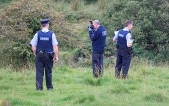 Gardaí at the scene where Patrick Dowds was gored