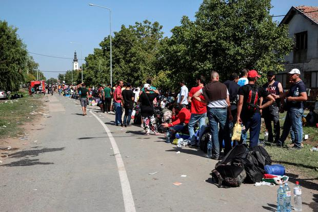 Thousands of refugees wait to cross the border from Serbia to Tovarnik in Croatia Credit: MSF