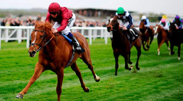 Eagle Top winning his maiden at Newbury last year under William Buick – the horse returns to the track today with Frankie Dettori aboard for the Dubai Duty Free Legacy Cup