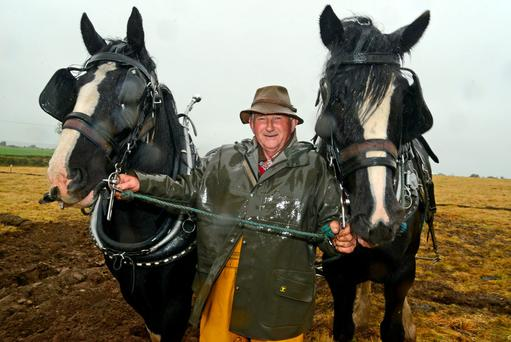 Pictured with his horses Penny and Sally at the agricultural open day at the ancestral home of Henry Forde at Ballinascarthy, Co Cork was Donal McCarthy from Rosscarbery, Co Cork. Photo: Denis Boyle
