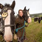 Kirsty Blake Knox with some working horses at the Ploughing Championships