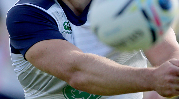 Utility man: Ian Madigan is covering a number of roles