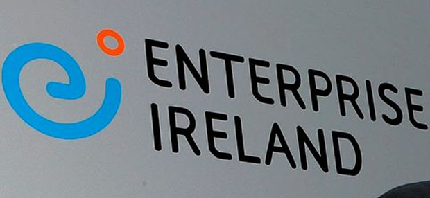 Stephen Brewer will be working with Enterprise Ireland in an effort to help the growth of Irish companies