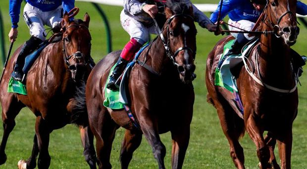 Frankie Dettori and Shalaa win The Juddmonte Middle Park Stakes at Newmarket