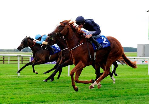 Coolmore (No 2) wins the CL & MF Weld Stakes under Joseph O'Brien yesterday