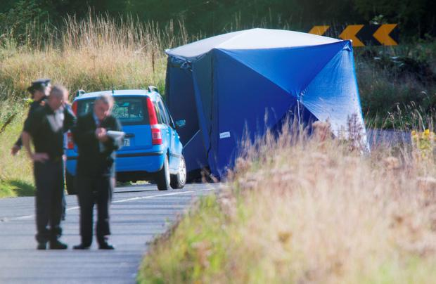 The scene of the incident at The Armagh Rd, Kilcurry, Co. Louth today.