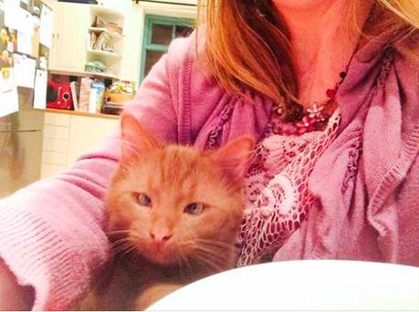 Caramel the adorable cross-eyed cat (Photo: Facebook/Siobhan Cronin)