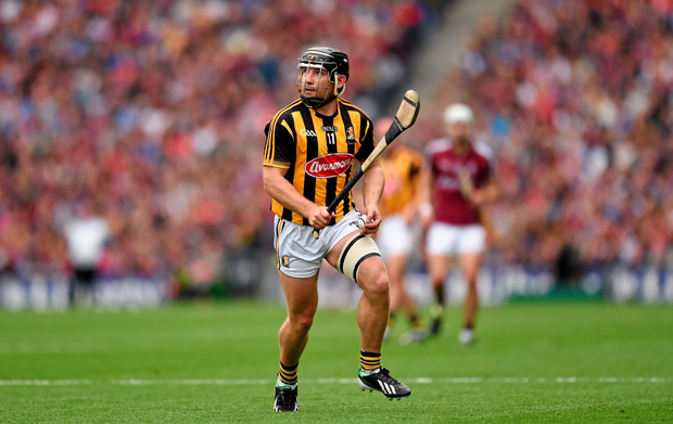 Kilkenny duo Richie Hogan, pictured, and TJ Reid have been joined on the shortlist for GAA/GPA Hurler of the Year