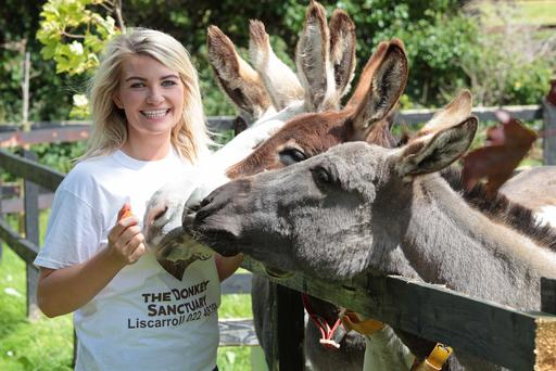 DC 21/08/2015 - REPRO FREE FREE PIC Triona O'Mahony of The Donkey Sanctuary in Cork Pic: Diane Cusack