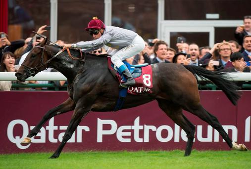 Thierry Jarnet drives Treve to her second Arc last year – the pair bid for an unique hat-trick at Longchamp tomorrow