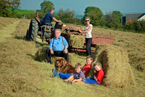 Pictured enjoying the sunshine while bailing hay at Kilmore, Bandon Co Cork was Hughie O'Donovan aged 93 with his son William and Niamh Lucey and her children Fionn, Aibheann and Oran and their dog Lilly. Photo: Denis Boyle