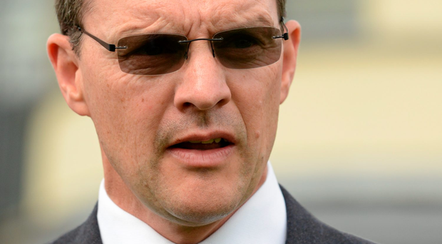 'The Aidan O'Brien (pictured) trained Air Force Blue has also already been successful twice at the top level, winning the Phoenix Stakes and the National Stakes, both at the Curragh'