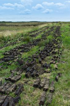 The 'biggest change of land use in modern Irish history': Bord na Móna plans to stop harvesting peat by 2030