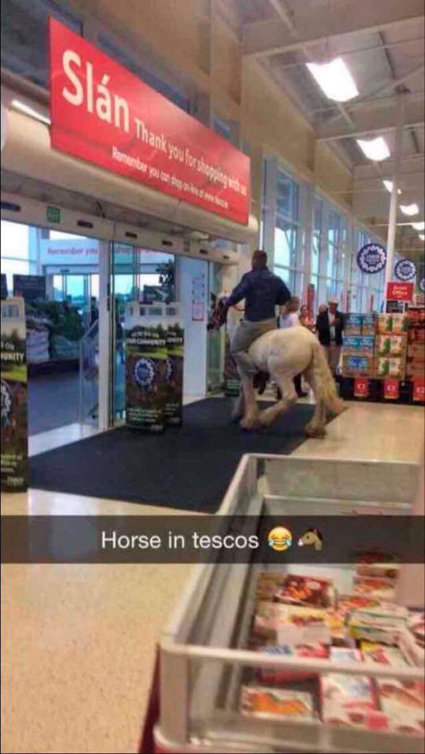 Finally a use for the horse emoji Credit: Peter Toplis