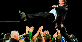 Northern Ireland manager Michael O'Neill gets thrown in the air by his players during the celebrations after the game