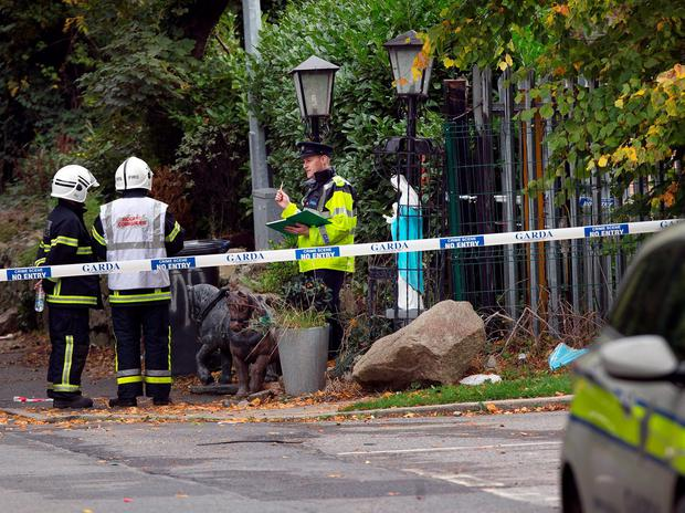 Gardai and fire services at the entrance of the halting site of the tragic fire at Glenamuck Road, Carrickmines, this morning. Photo: Tony Gavin.