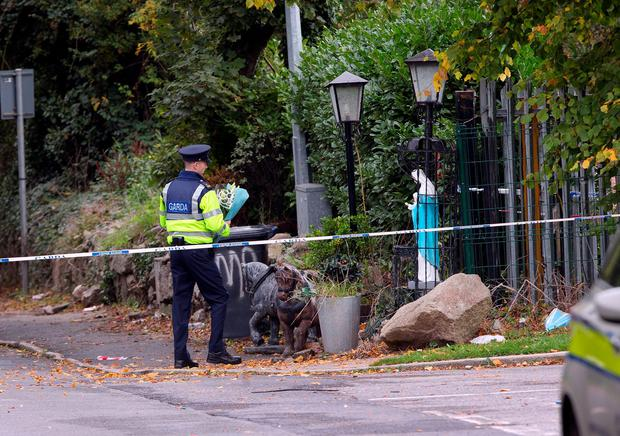 A garda brings flowers to the scene of the tragic fire at Glenmaluck Road, Carrickmines. Photo: Tony Gavin.