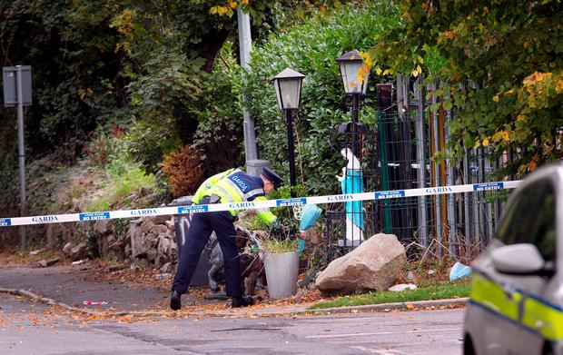 A garda lays flowers at the scene of the tragic fire at Glenmaluck Road, Carrickmines, this morning. Photo: Tony Gavin. Photo: Tony Gavin 10/10/2015