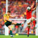 Australia's Bernard Foley kicks the ball away from danger during the Rugby World Cup match at Twickenham Stadium