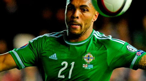 'The contribution of Josh Magennis [pictured], given his chance in the absence of top scorer Kyle Lafferty... epitomised the team's mend and make do attitude'