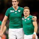 Devin Toner and Ian Madigan are two of the less experienced Irish players who stepped up to the plate
