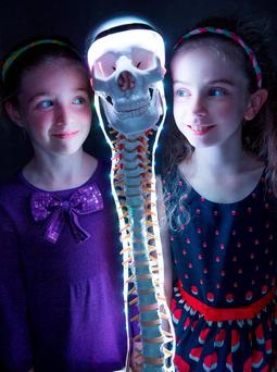 Florence Ross (5) and Lara O'Connor (9) were at the seventh annual Straighten Up Ireland Week