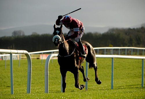 Don Cossack, with Brian O'Connell up, on their way to winning the John Durkan Memorial at Punchestown in December