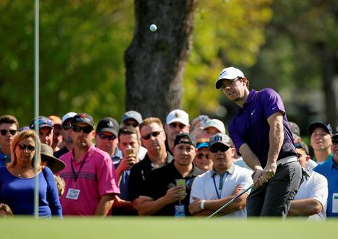 Rory McIlroy chips the ball onto the ninth green of the Silverado Resort North Course during the first round of the Frys.com PGA Tour golf tournament in Napa, California. (AP Photo/Eric Risberg)