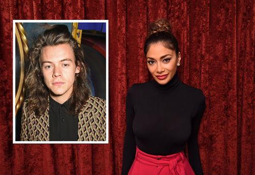 Nicole Scherzinger is said to have had a secret fling with Harry Styles who is 14 years her junior