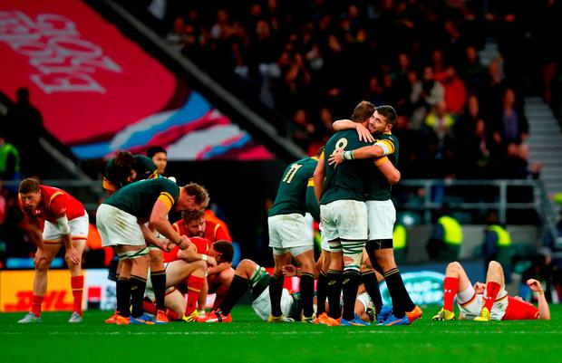 South Africa players celebrate their team's victory as the final whistle blows