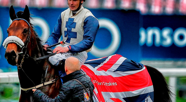 Pat Smullen and Fascinating Rock after winning the Champion Stakes at Ascot yesterday