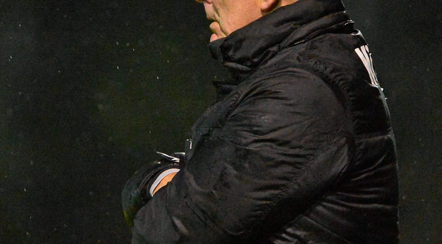 Bray Wanderers manager Mick Cooke believes his side could have claimed victory over Shamrock Rovers