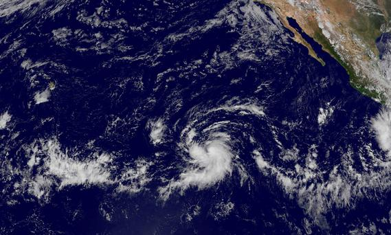 File photo: This image obtained from NASA shows Tropical Storm Olaf (C) in the eastern Pacific far from land and could become a hurricane on October 18, 2015. Photo: AFP/Getty Images