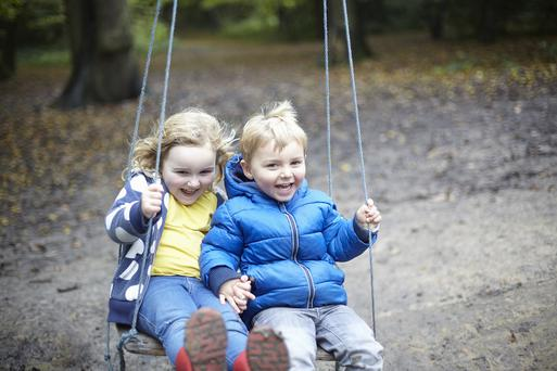 The eldest child is likely to be more intelligent than their siblings.